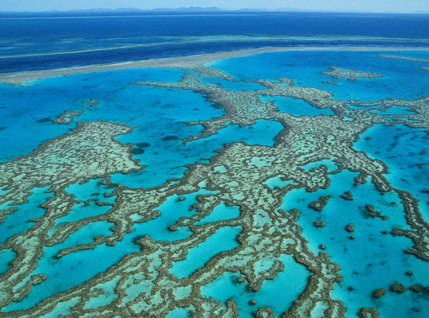 Oceania, Australia & New Zealand Travel - blue coral waters shot