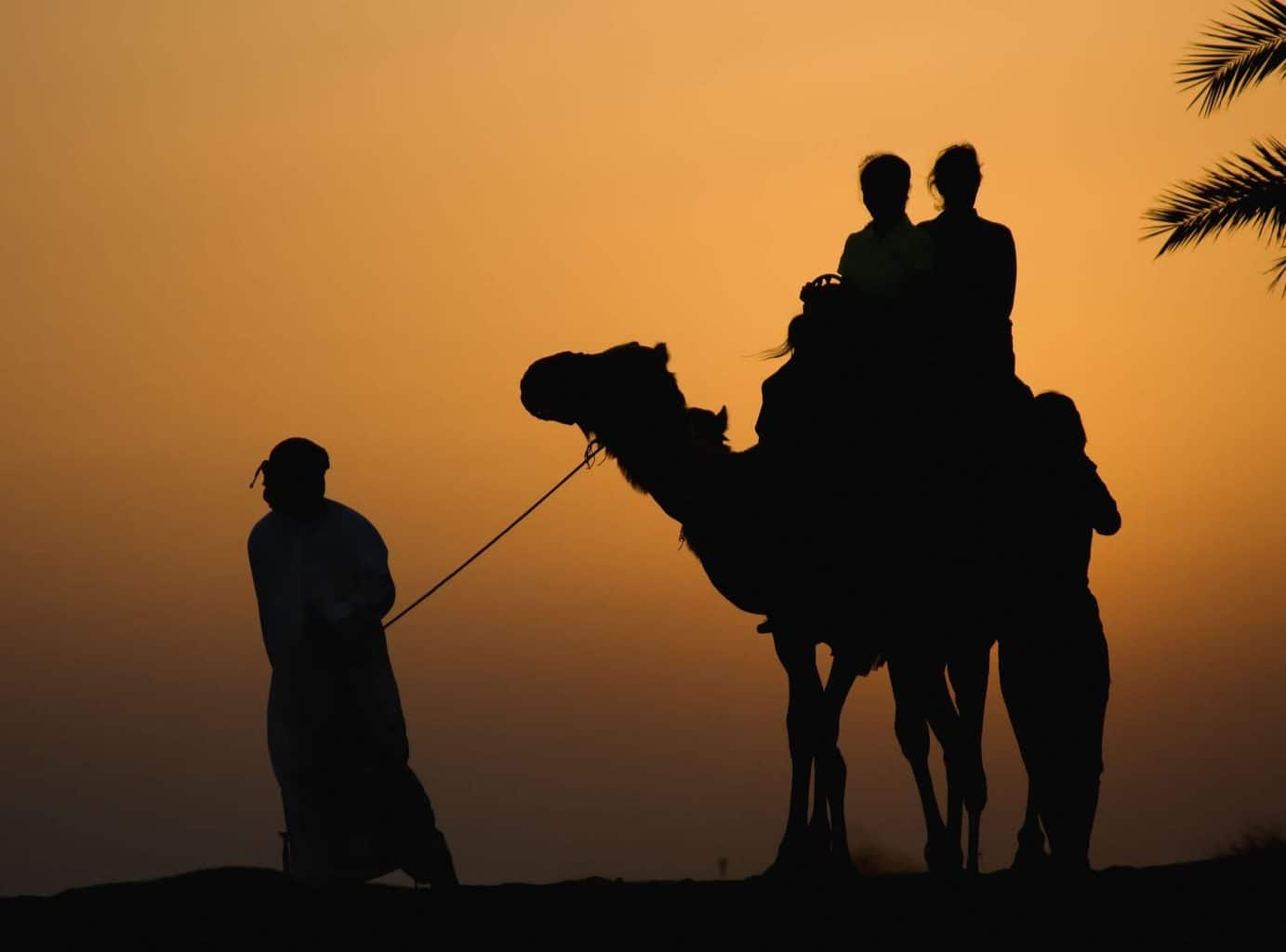 Middle East Holidays - Camel Ride at Sunset