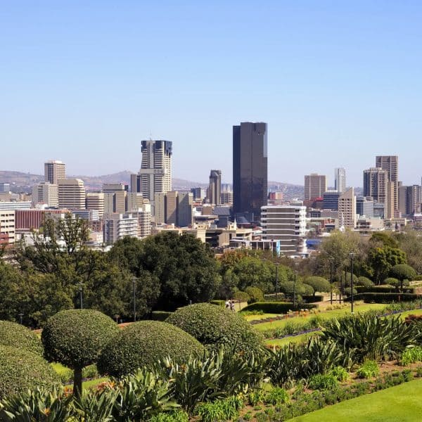 Luxury Johannesburg Holidays - City skyline view with trees in forground