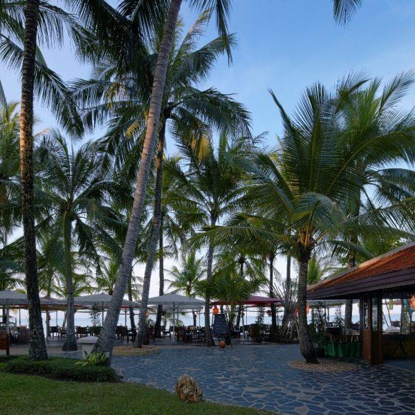 View of the beach with palm tree at Santiburi Beach Resort & Spa Koh Samui in Thailand