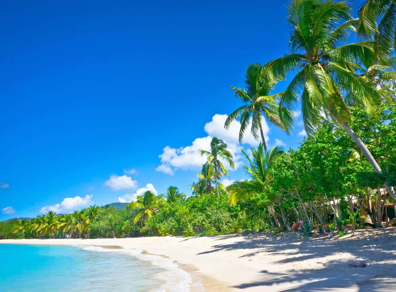 Luxury Caribbean Holidays Beach, Palm trees and Ocean view
