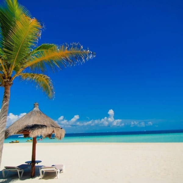 Luxury Holidays To Cancún - White beach, palm tree, sunbed and ocean view