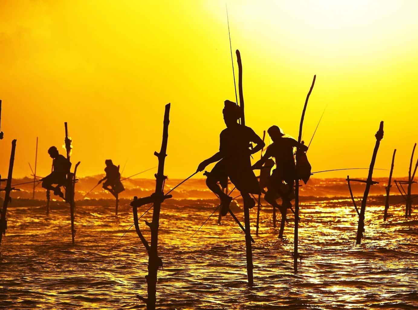 Luxury Sri Lanka Holidays silhoettes in water at sunset