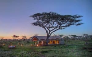 serengeti under canvas tanzania zanzibar holiday