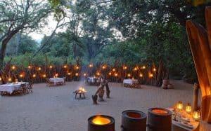 tanzanian and zanzibar lake manyara tree lodge