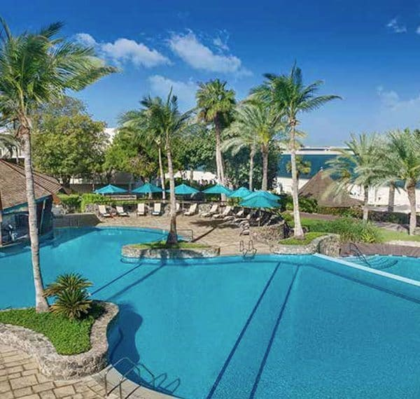 JA Palm Tree Court Dubai Offer pool view