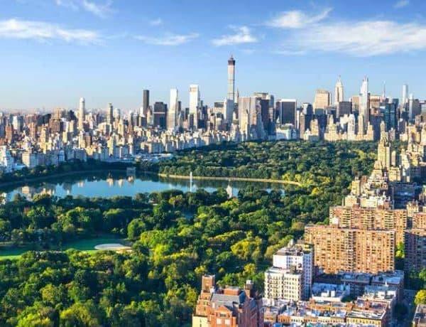 New York Offer