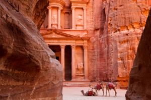 Things to do in Amman Visit Petra Camels