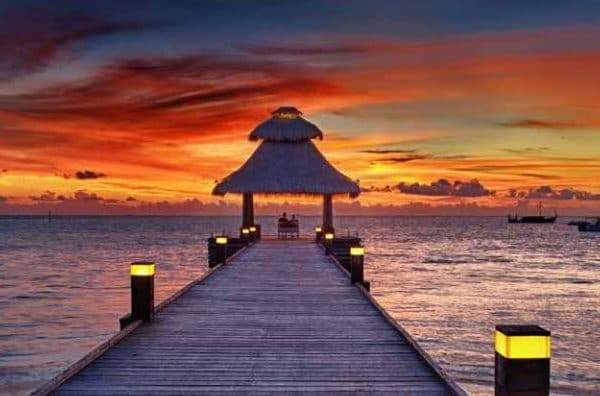 Veligandu Island Resort Maldives Offer