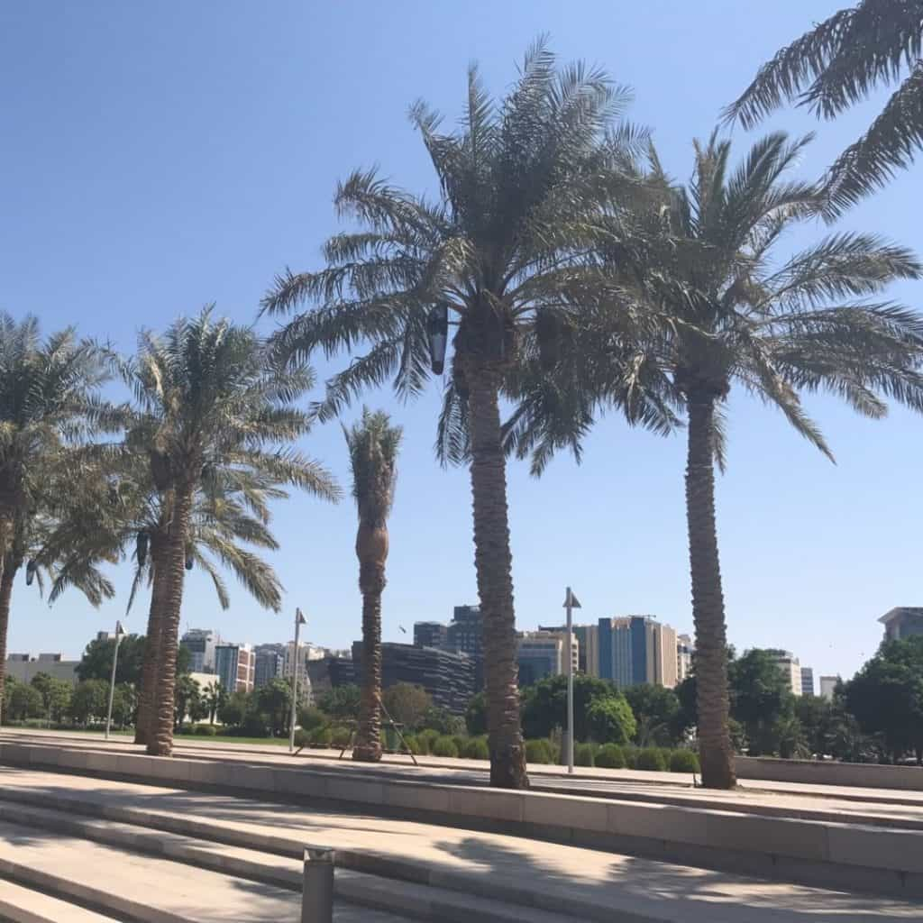 View of the city with palm trees in Doha, Qatar