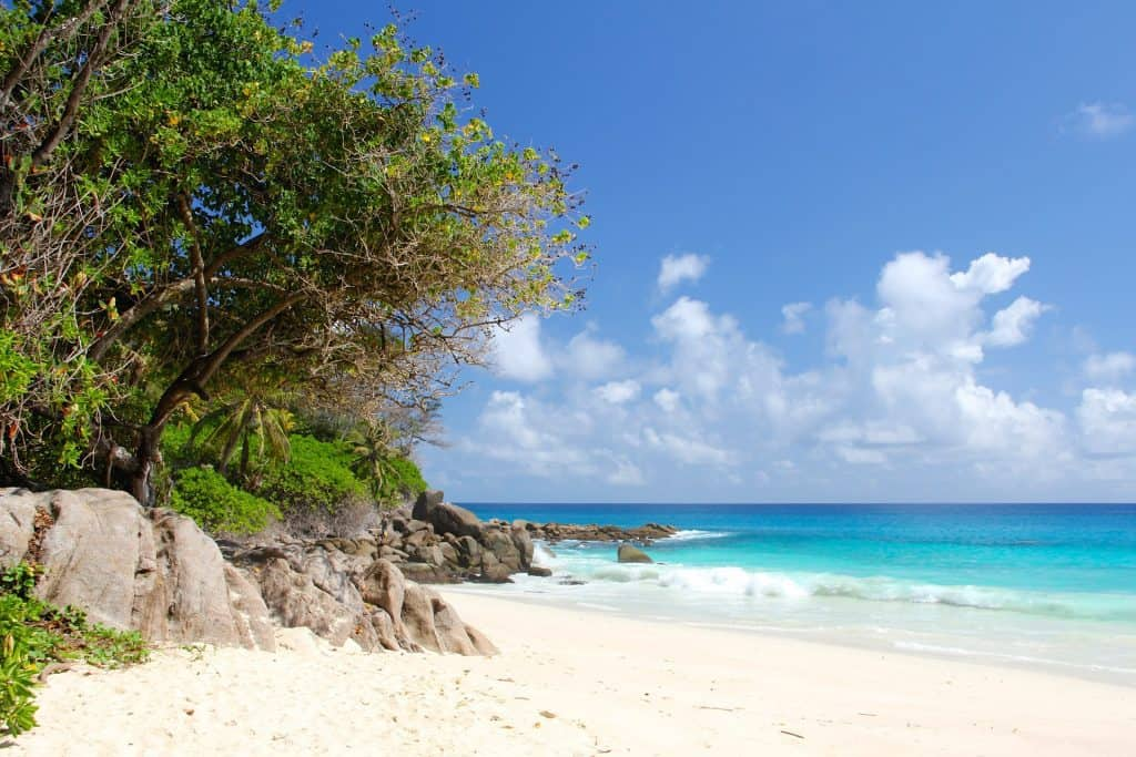 Beach in Seychelles - Top Destinations Travel Blog